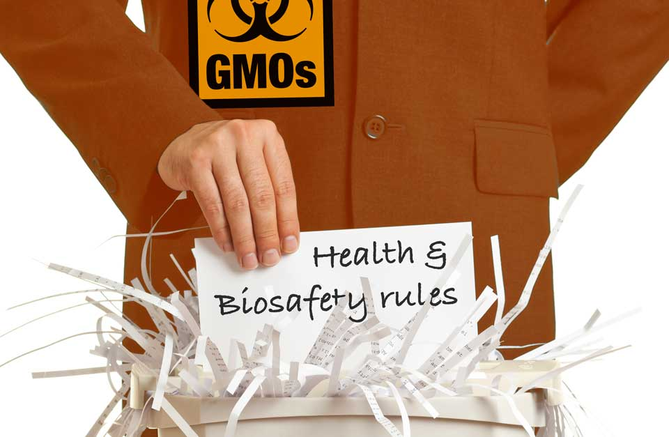 Biotech lobby's push for new GMOs to escape regulation