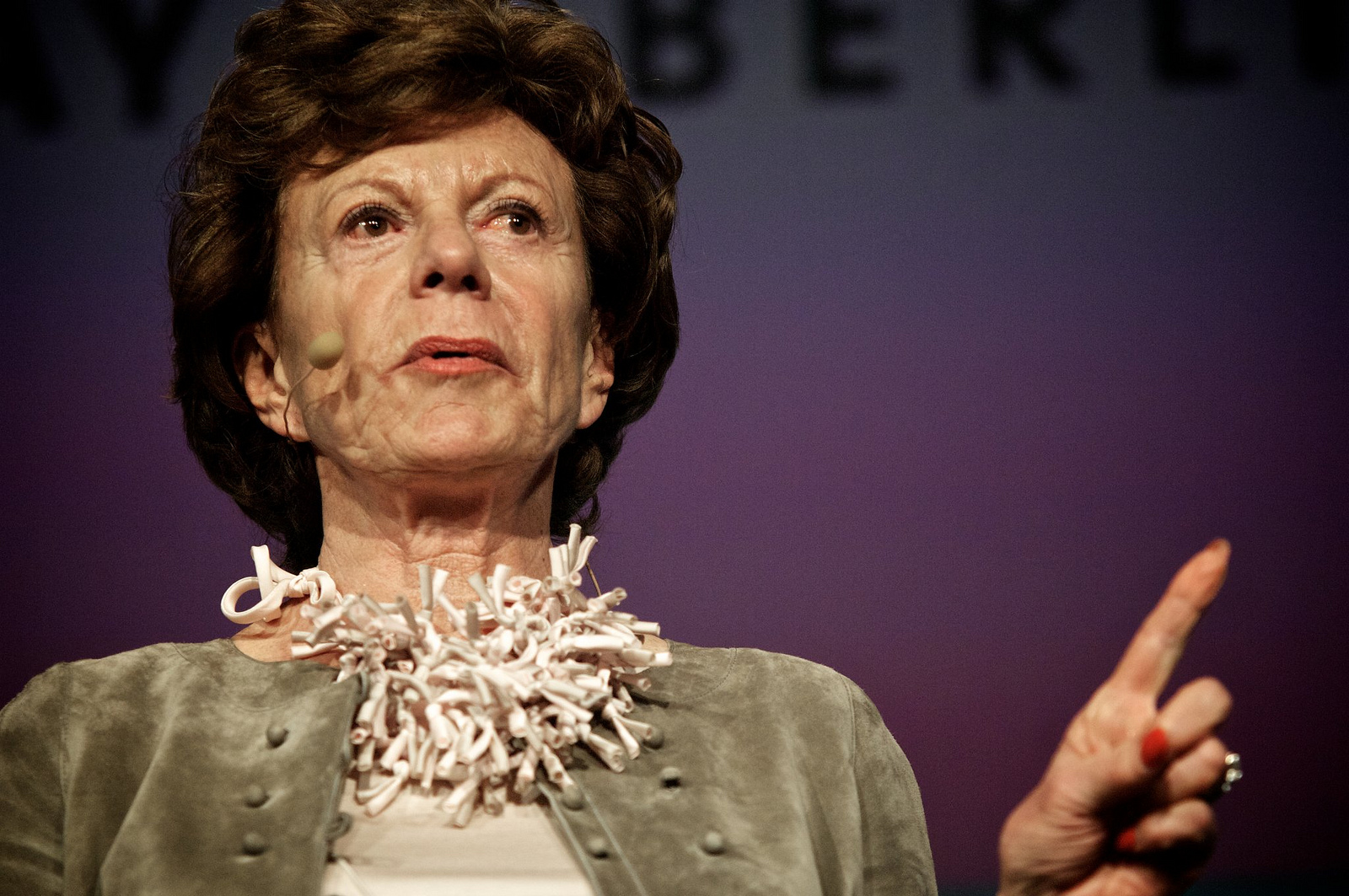 Neelie Kroes — source: Gregor Fischer